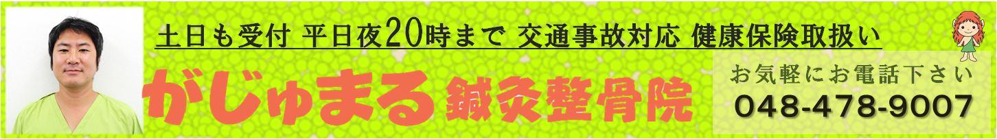 gajyumaru_banner
